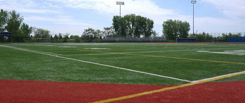 Multifunctional Artificial Turf